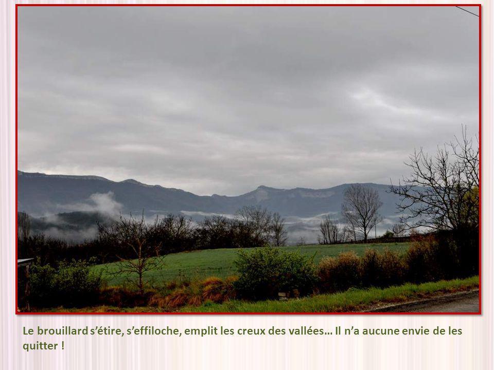 Le brouillard sétire, seffiloche, emplit les creux des vallées… Il na aucune envie de les quitter !