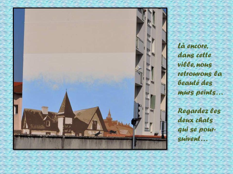Ils vous manquaient, mes pigeons ? Mais non, ils sont venus en visite chez leurs congénères, à La Tour du Pin, sur les bords de la Bourbe.