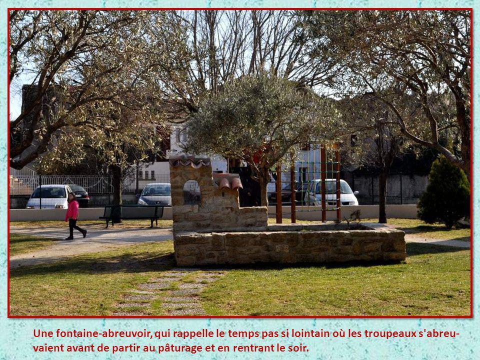 Nous arrivons à Bédarrides, où cette belle fontaine nous accueille au centre de la place. Ce kiosque-fontaine est en réalité le château d'eau, qui dép