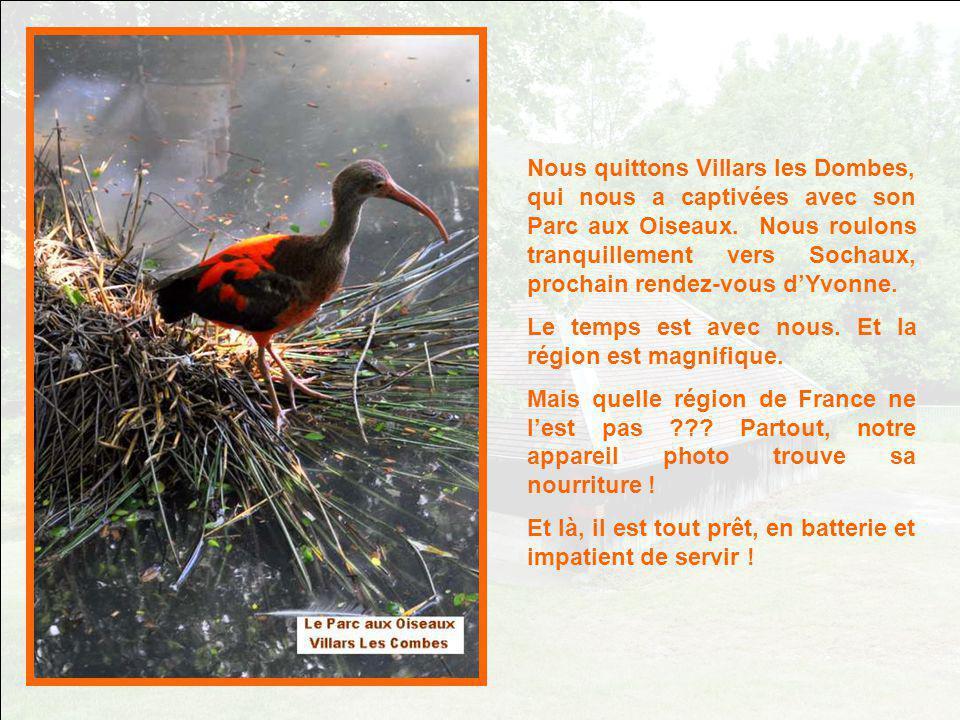 Nous quittons Villars les Dombes, qui nous a captivées avec son Parc aux Oiseaux.