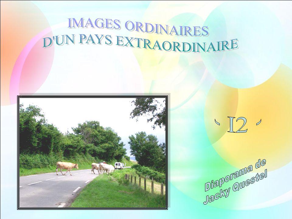 Nous dirigeant vers le Cap Grand-Nez, dans la région Nord-Pas-de- Calais, nous avons traversé la commune dAudinghen.