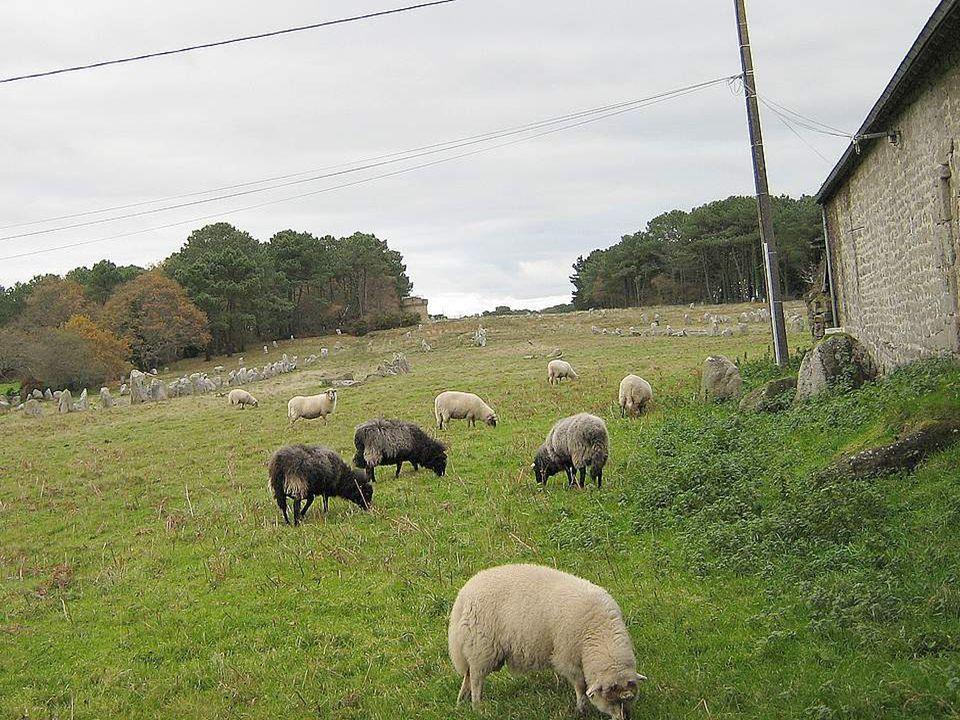 Restons encore en plein mystère… La Bretagne est une terre de légendes et de mystères. Ses menhirs et dolmens nont pas livré tous leurs secrets encore