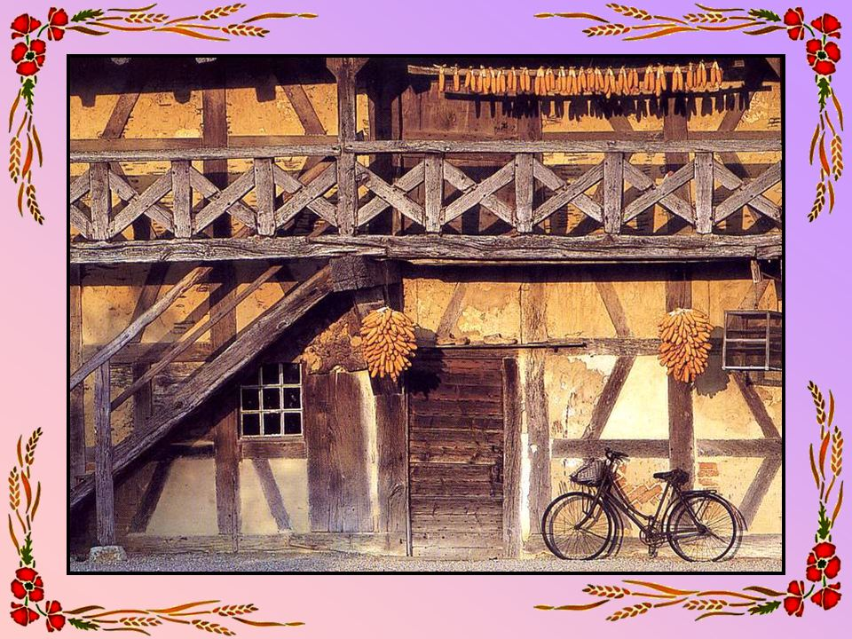 Jardin à Pérouges (01 – Ain) Pérouges est une cité médiévale située à 30 km au nord- est de Lyon, et juchée sur un mamelon de la Côtière dominant la plaine de lAin.