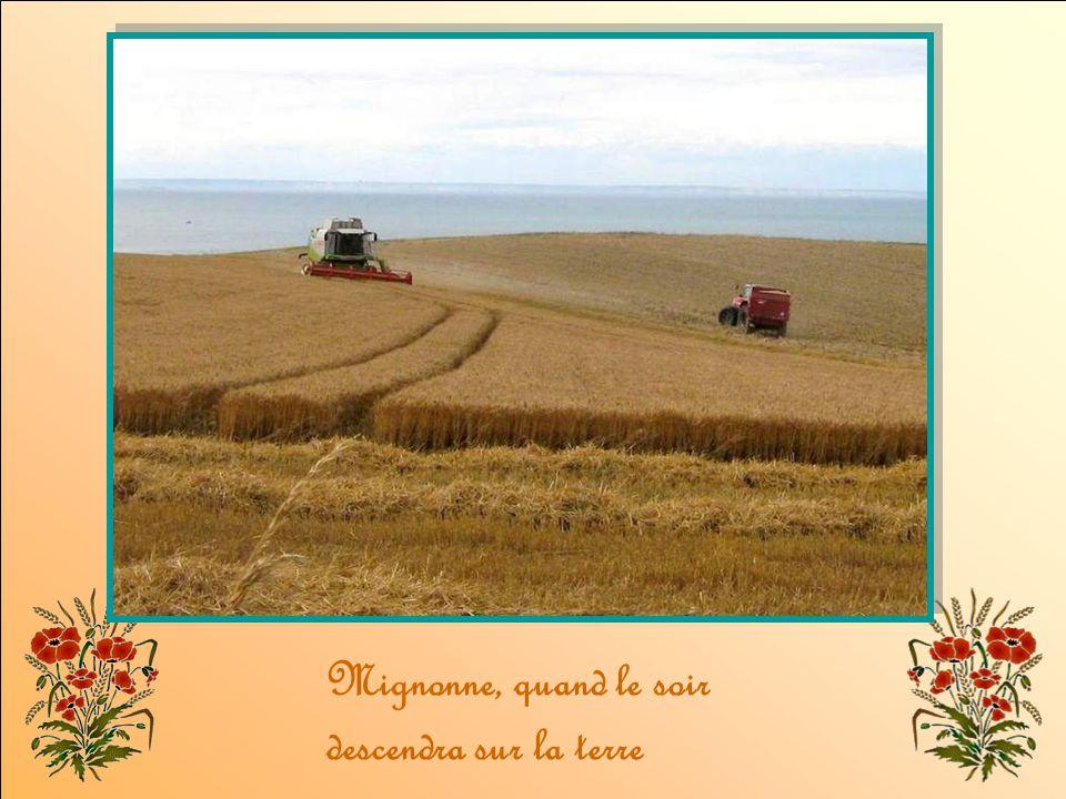 Entendu la chanson divine Que chantent les blés frémissants ?