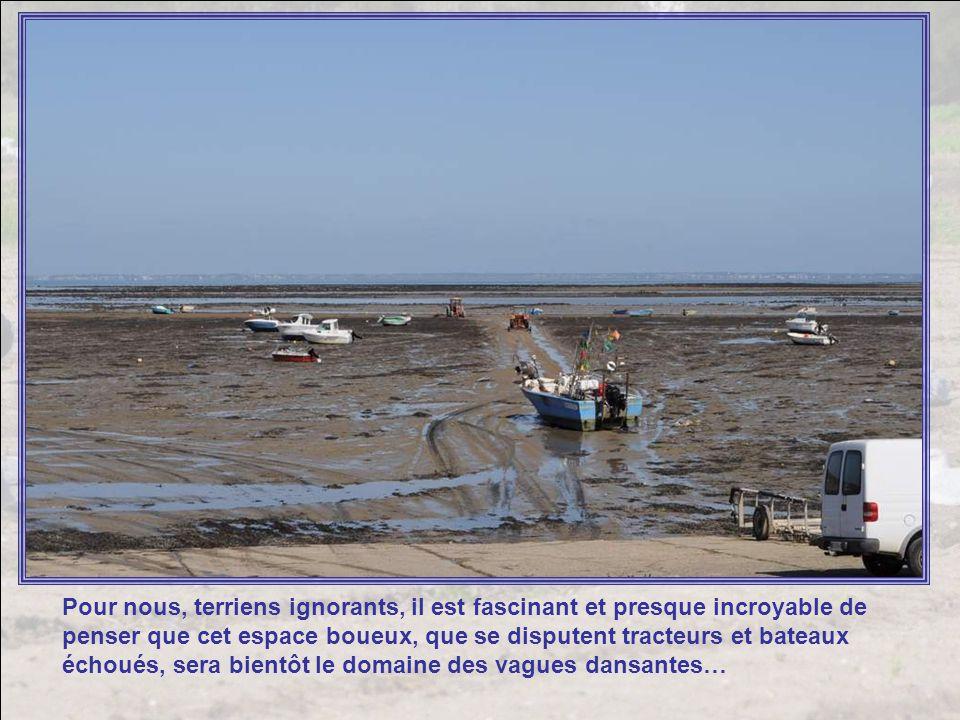 Car la richesse de lîle, cest aussi lostréiculture : la culture des moules et des huîtres. Les ostréiculteurs vivent au rythme des marées, attendant q