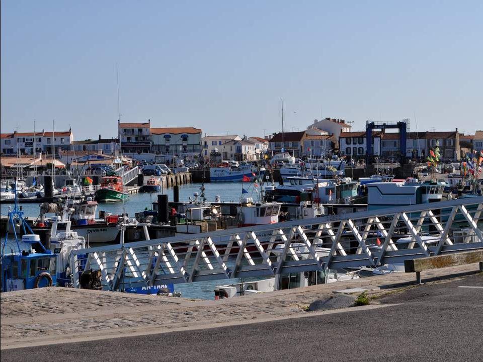 Bien entendu, lile comprend dimportants ports où plaisance et pêche se cotoient.