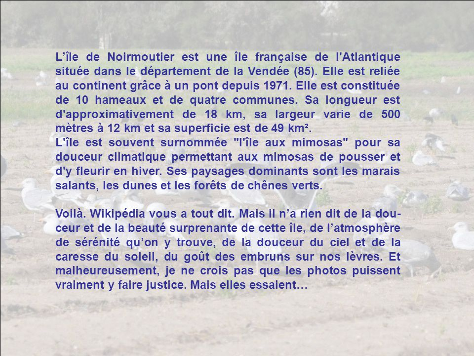 Lîle de Noirmoutier est une île française de l Atlantique située dans le département de la Vendée (85).