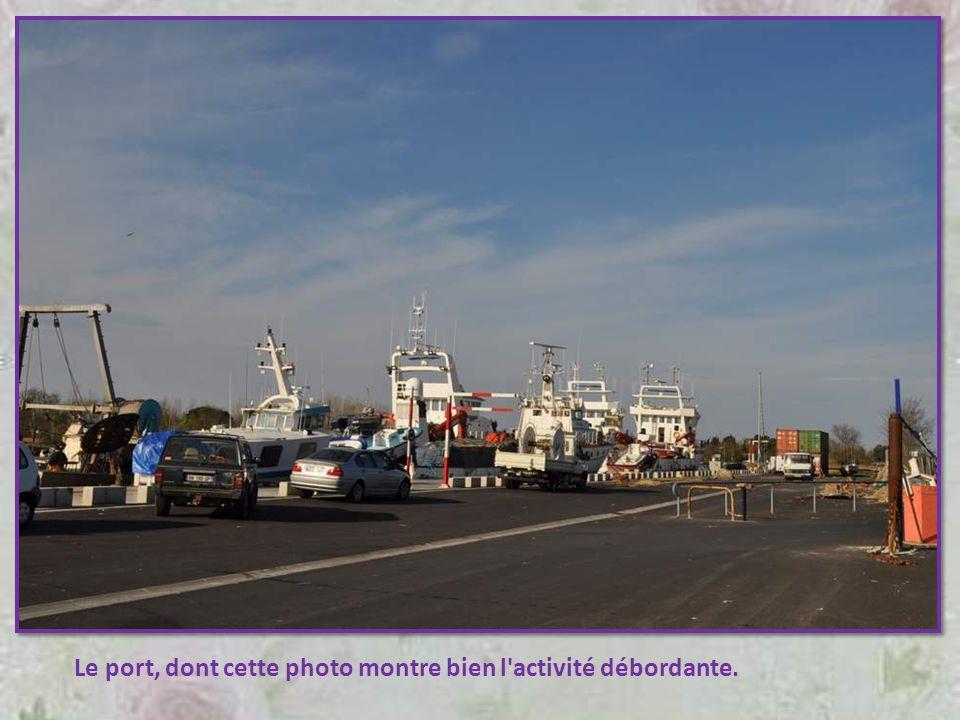 Rond-point au Cap-d'Agde, qui rappelle à tout un chacun (comme si l'on pouvait l'oublier !) le caractère maritime de la région.
