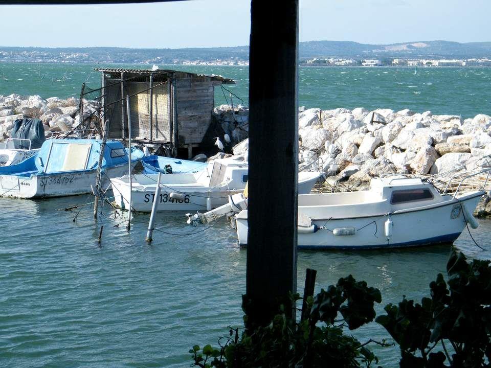 Le port, dont cette photo montre bien l'activité débordante.