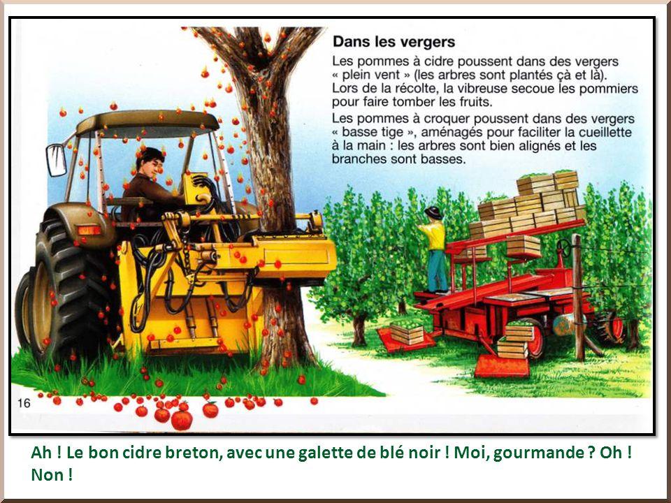 Dans ma ville, à Oloron-Sainte-Marie, les chocolats Lindt ont une usine.