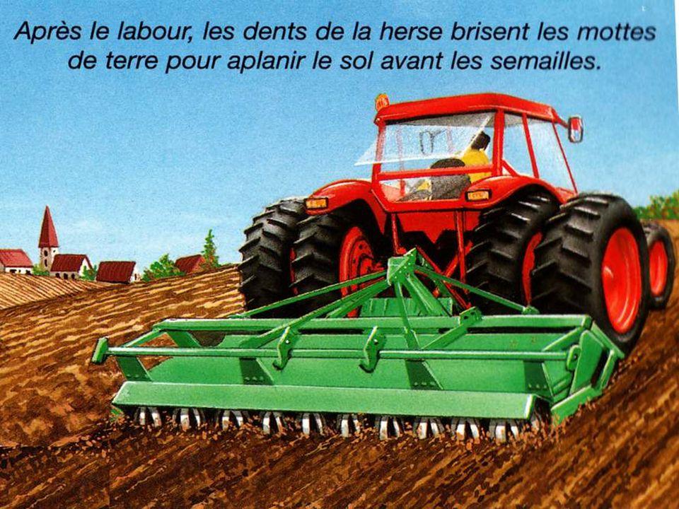 Ne crois pas que l herbe, dans les prés, pousse toute seule et ne donne pas de travail .