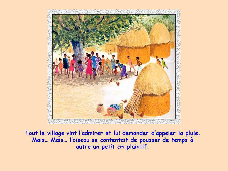 Tout le village accourut !
