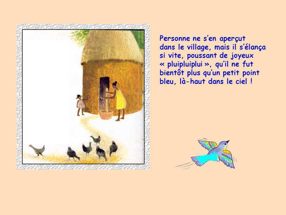Banioum rentra chez lui, ouvrit la cage et sortit délicatement loiseau en murmurant : «Oiseau, mon bel oiseau.. Va.. Va… » Loiseau tourna la tête, reg
