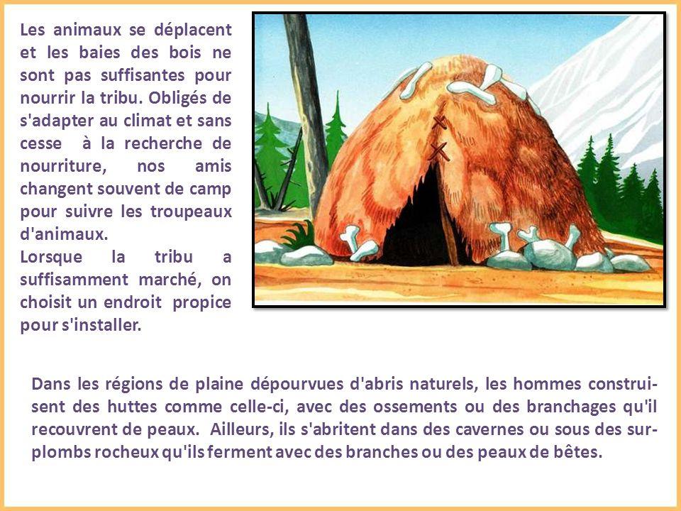 Les animaux se déplacent et les baies des bois ne sont pas suffisantes pour nourrir la tribu.