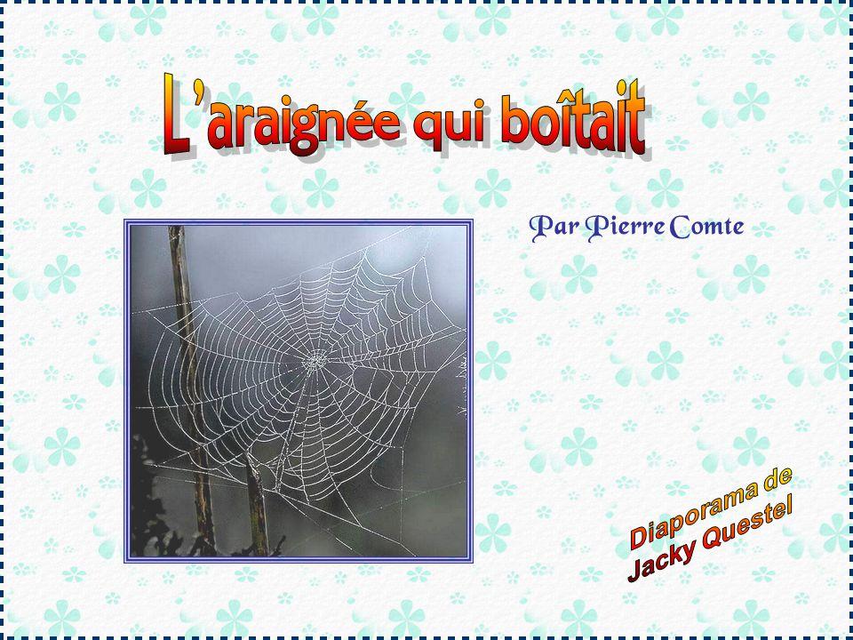 Par Pierre Comte