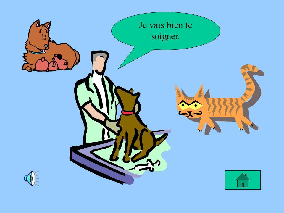 Le rêve de Pamela Je rêve de devenir vétérinaire pour soigner les animaux parce que je les aime.