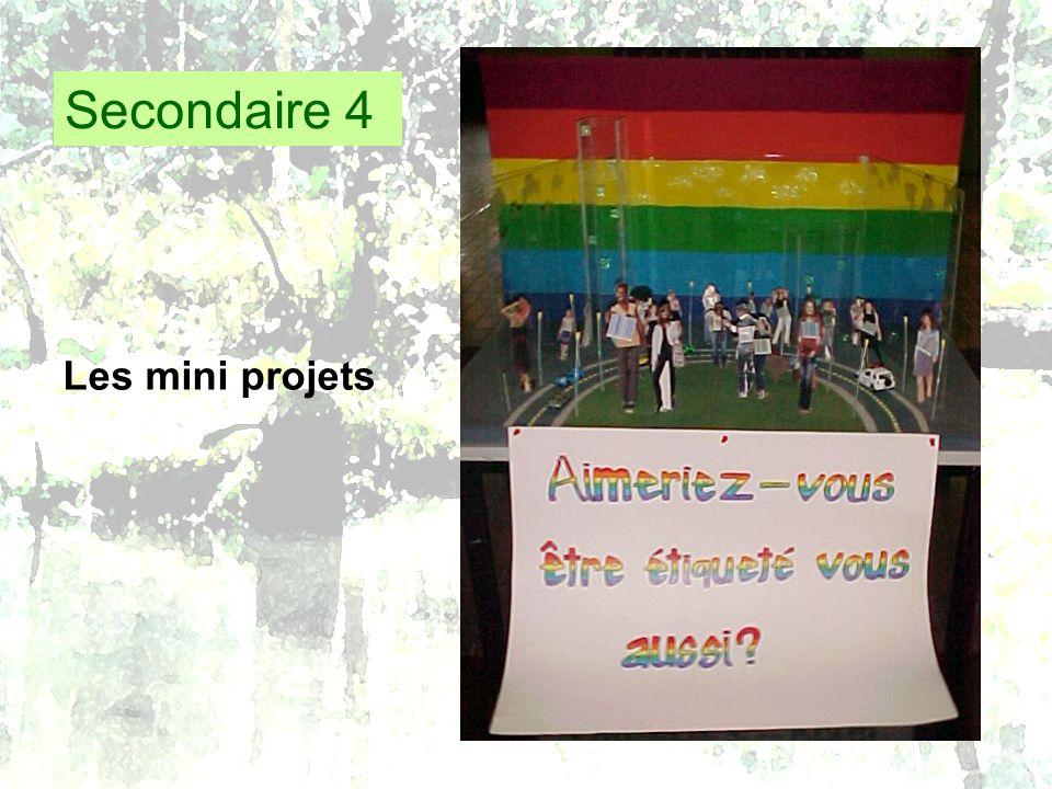 Secondaire 4 Les mini projets