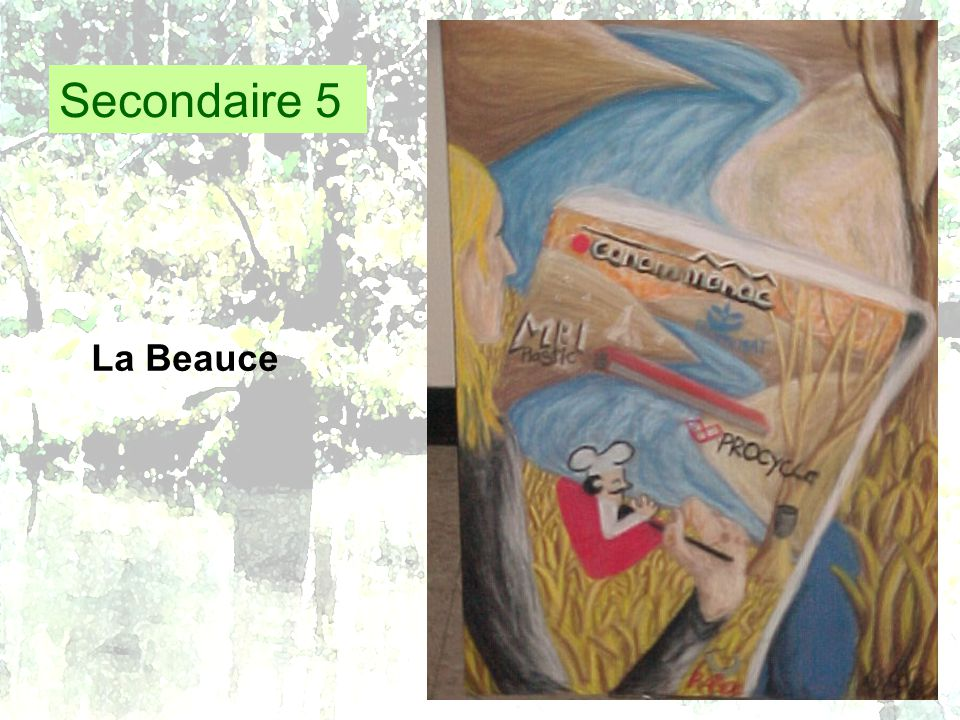Secondaire 5 La Beauce