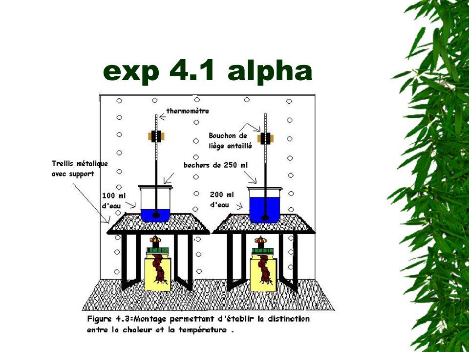 exp 4.1 alpha