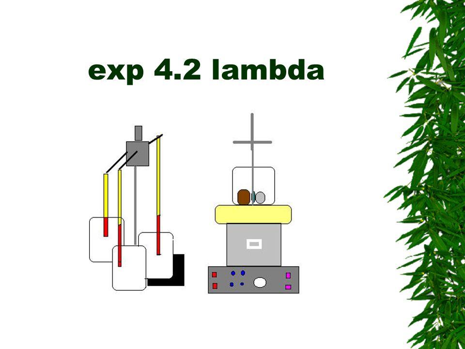 exp 4.2 lambda
