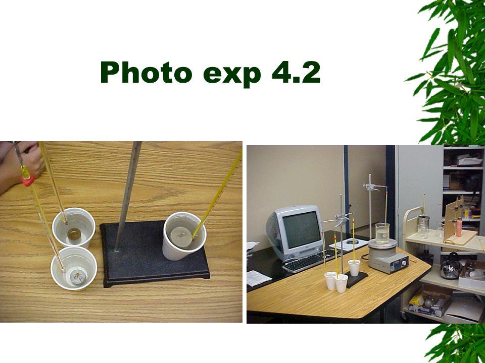 Photo exp 4.2