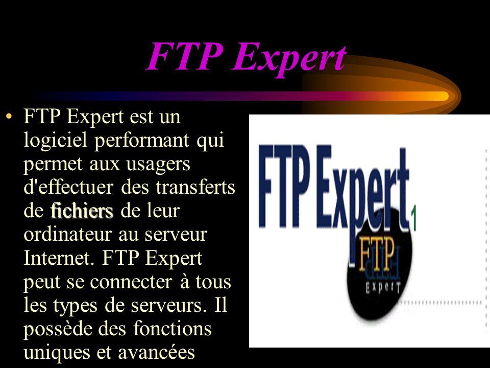 FTP Expert fichiersFTP Expert est un logiciel performant qui permet aux usagers d effectuer des transferts de fichiers de leur ordinateur au serveur Internet.