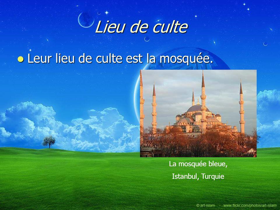 Lieu de culte Leur lieu de culte est la mosquée. Leur lieu de culte est la mosquée. La mosquée bleue, Istanbul, Turquie