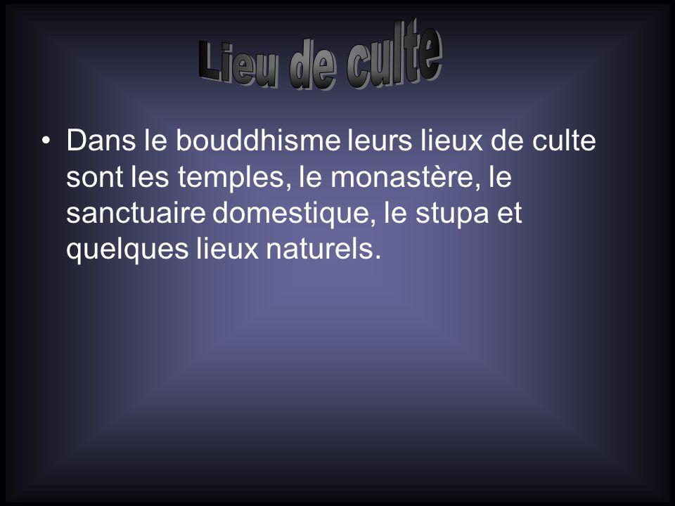 Dans le bouddhisme leurs lieux de culte sont les temples, le monastère, le sanctuaire domestique, le stupa et quelques lieux naturels.