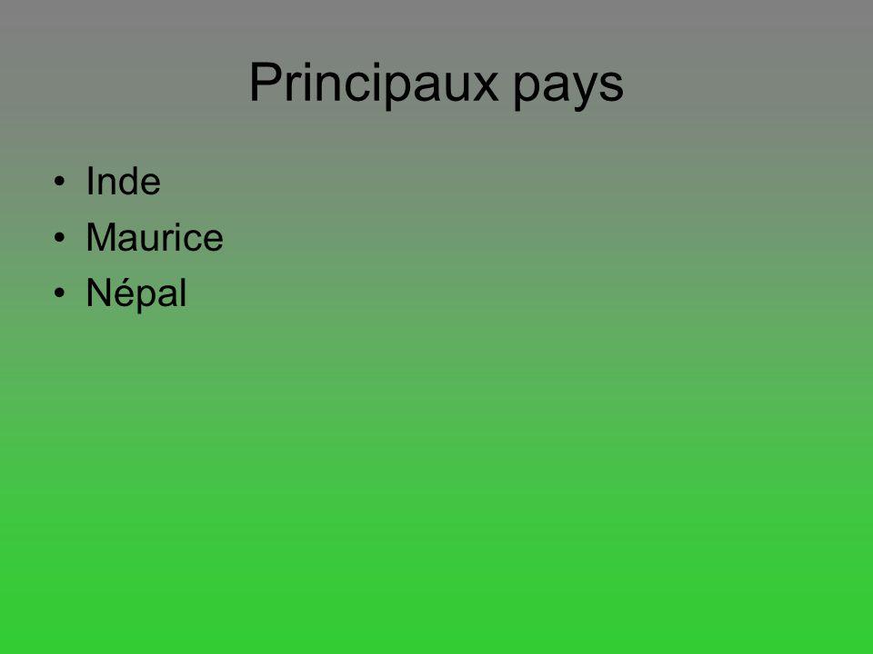 Principaux pays Inde Maurice Népal