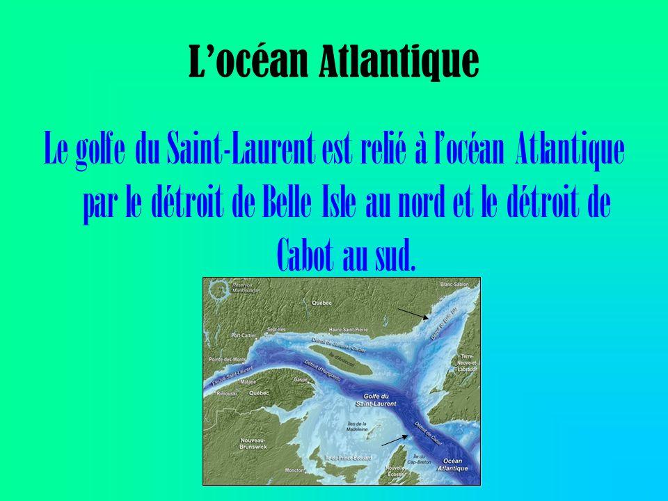 La répartition de la morue de lAtlantique (Golfe Saint-Laurent) est sur la carte à coté.