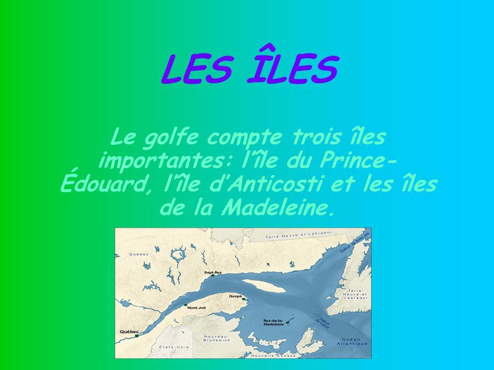 Locéan Atlantique Le golfe du Saint-Laurent est relié à locéan Atlantique par le détroit de Belle Isle au nord et le détroit de Cabot au sud.