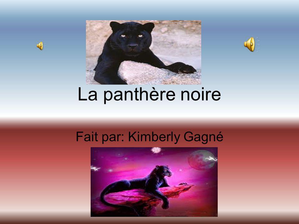 La panthère noire Fait par: Kimberly Gagné
