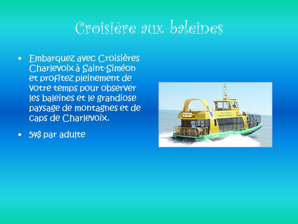 Croisière aux baleines Embarquez avec Croisières Charlevoix à Saint-Siméon et profitez pleinement de votre temps pour observer les baleines et le gran