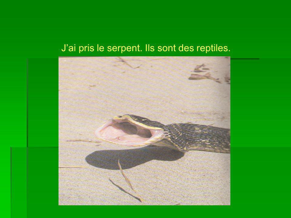On retrouve les serpents en Amérique du Nord dans des déserts, des forêts, des prairies et dans les montagnes.