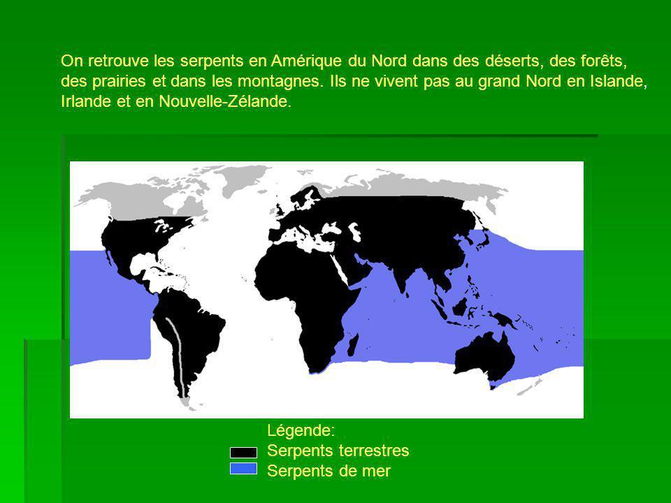 On retrouve les serpents en Amérique du Nord dans des déserts, des forêts, des prairies et dans les montagnes. Ils ne vivent pas au grand Nord en Isla