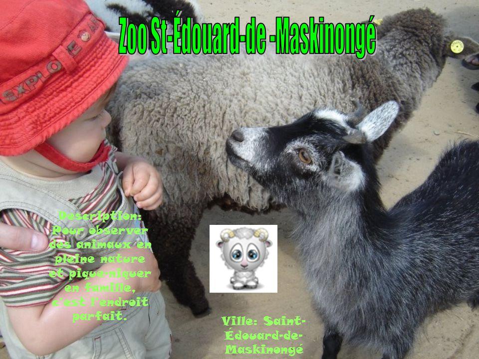 Ville: Saint- Édouard-de- Maskinongé Description: Pour observer des animaux en pleine nature et pique-niquer en famille, cest lendroit parfait.