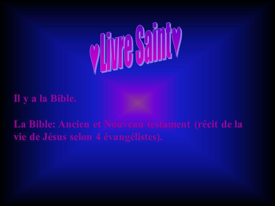 Il y a la Bible. La Bible: Ancien et Nouveau testament (récit de la vie de Jésus selon 4 évangélistes).