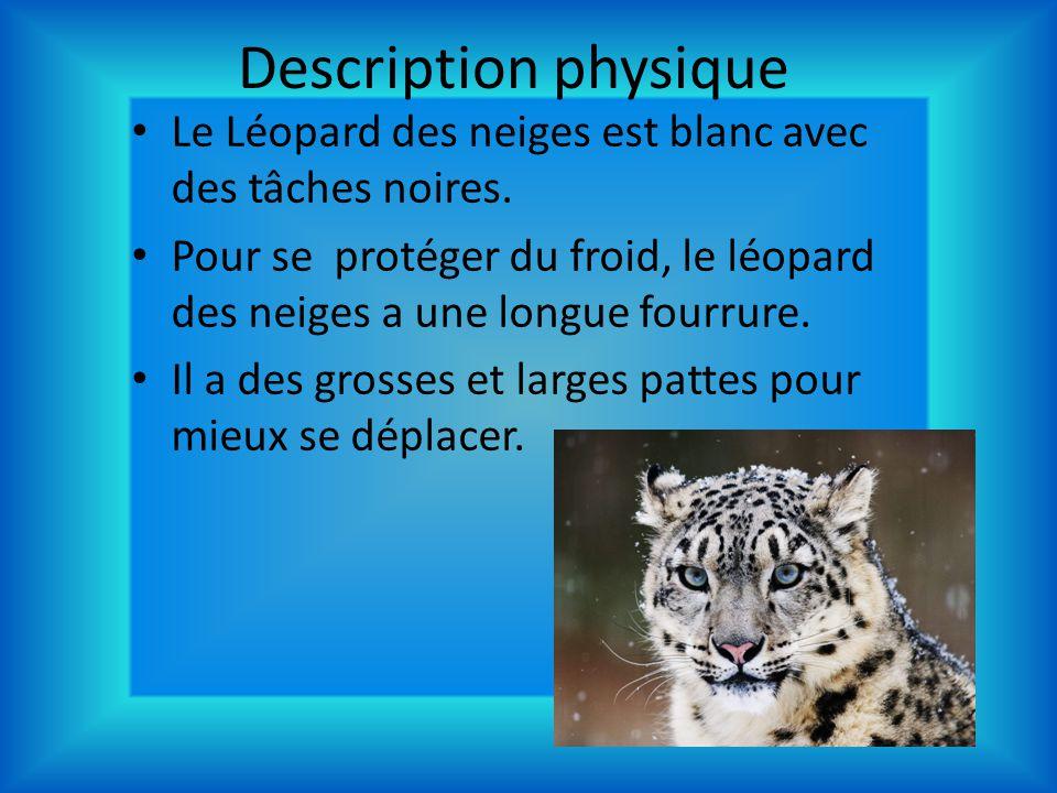Description physique Le Léopard des neiges est blanc avec des tâches noires. Pour se protéger du froid, le léopard des neiges a une longue fourrure. I