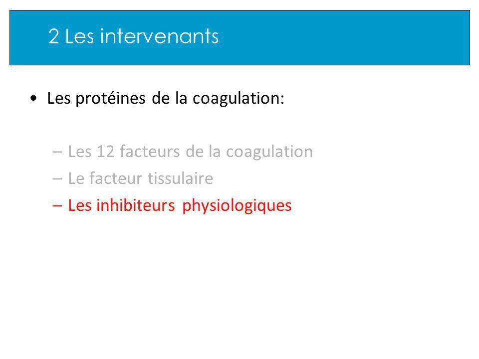 2 Les intervenants Les protéines de la coagulation: –Les 12 facteurs de la coagulation –Le facteur tissulaire –Les inhibiteurs physiologiques