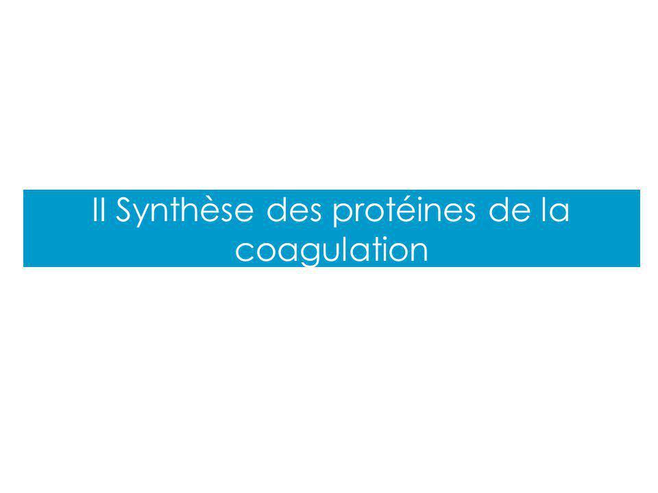Cours PCEM2 II Synthèse des protéines de la coagulation