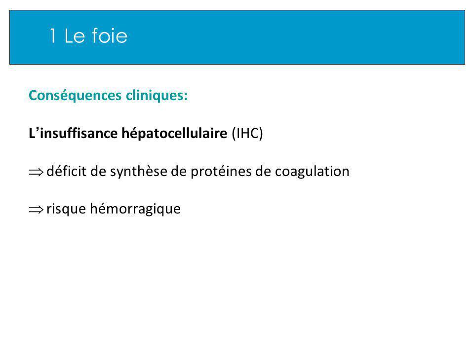 1 Le foie Conséquences cliniques: L insuffisance hépatocellulaire (IHC) déficit de synthèse de protéines de coagulation risque hémorragique