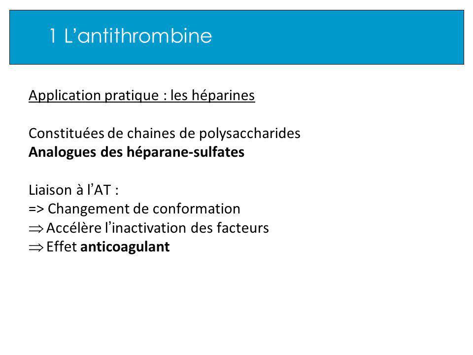 Application pratique : les héparines Constituées de chaines de polysaccharides Analogues des héparane-sulfates Liaison à l AT : => Changement de conformation Accélère l inactivation des facteurs Effet anticoagulant