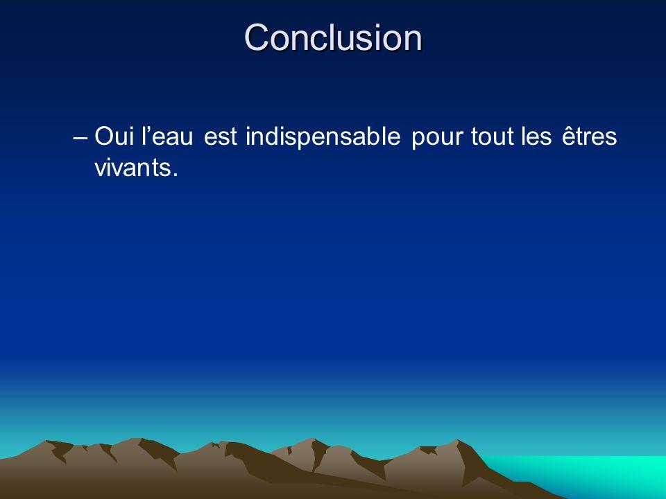 Conclusion –O–Oui leau est indispensable pour tout les êtres vivants.