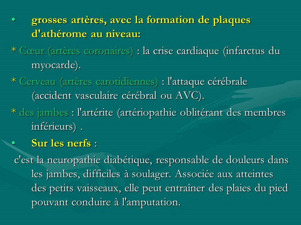 grosses artères, avec la formation de plaques d'athérome au niveau:grosses artères, avec la formation de plaques d'athérome au niveau: * Cœur (artères