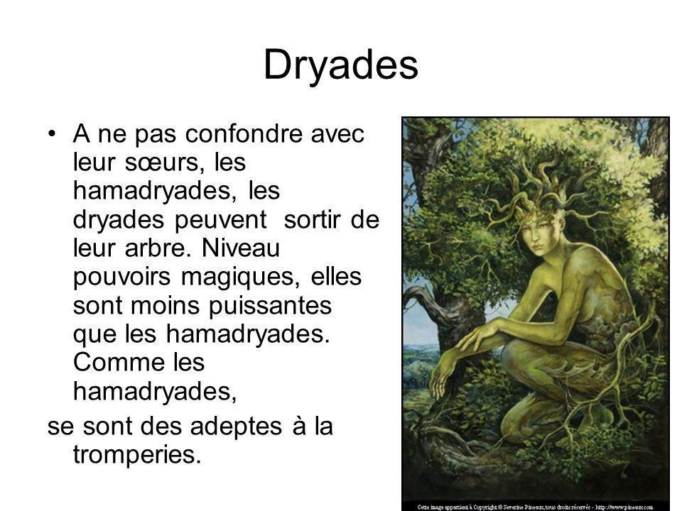 Lhamadryade Lhamadryade est une fée qui vit à lintérieur dun arbre.
