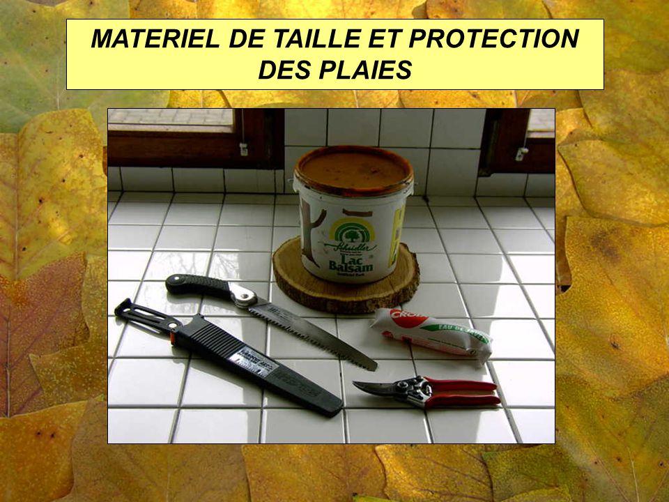 MATERIEL DE TAILLE ET PROTECTION DES PLAIES