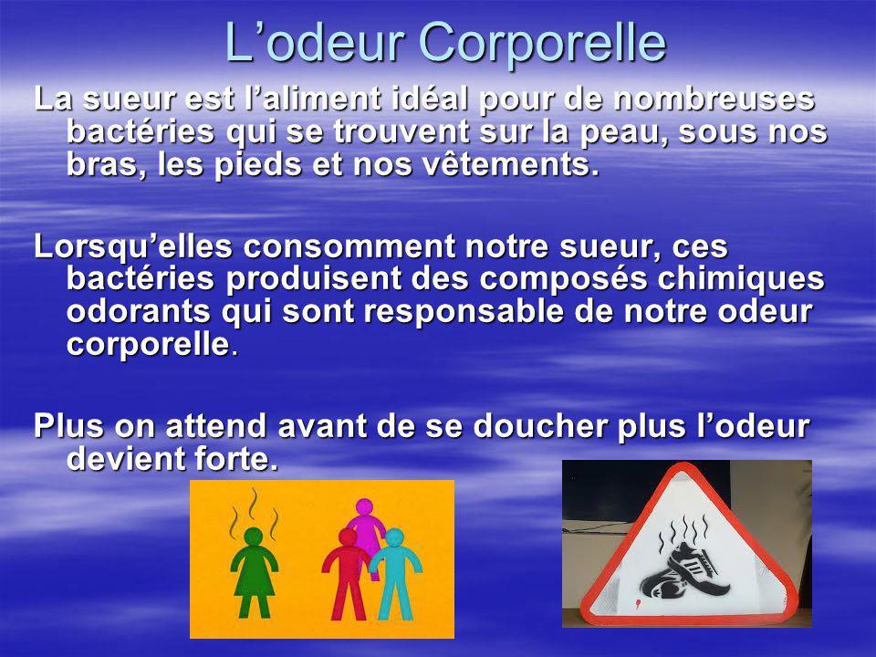 Lodeur Corporelle La sueur est laliment idéal pour de nombreuses bactéries qui se trouvent sur la peau, sous nos bras, les pieds et nos vêtements. Lor