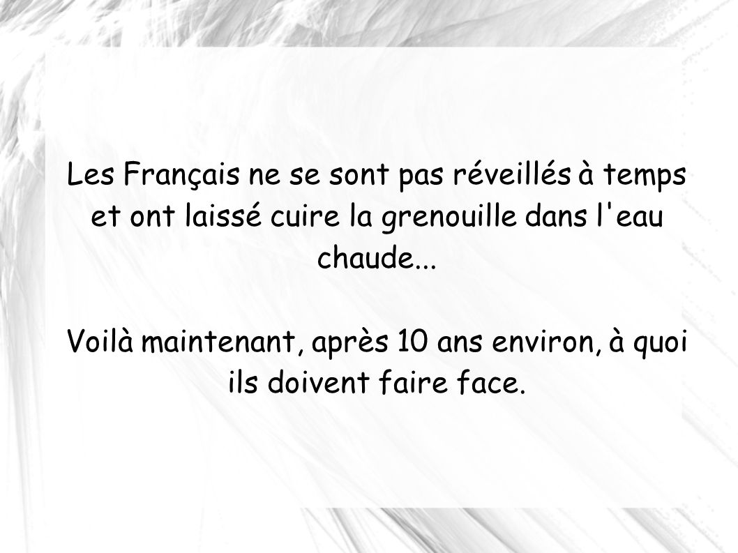 Les Français ne se sont pas réveillés à temps et ont laissé cuire la grenouille dans l'eau chaude... Voilà maintenant, après 10 ans environ, à quoi il