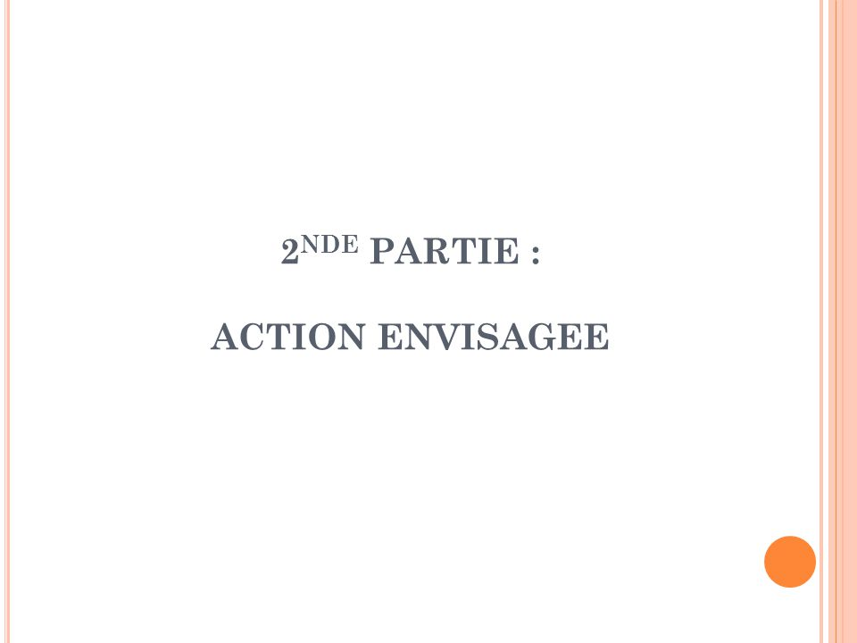2 NDE PARTIE : ACTION ENVISAGEE