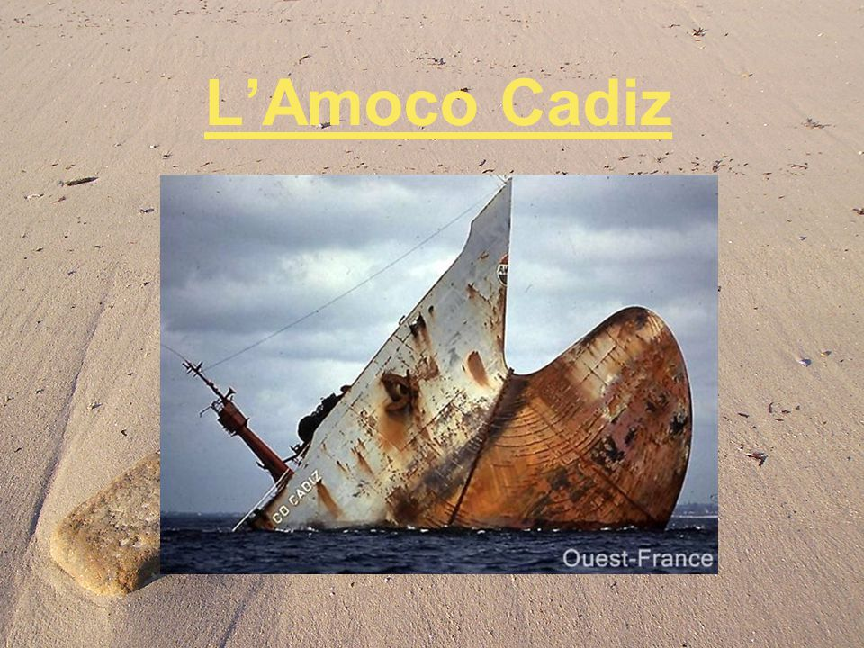 January 22, 1992 In call, Amoco is condemned to pour 183 million euros in the State and nearly 35 million euros to the victims, that is to say the quarter of the requests of the elected officials, who deplore the absence of taking into account the ecological damage.